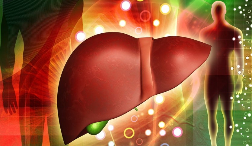 Liver Detoxification Pathways - Ask The Scientists