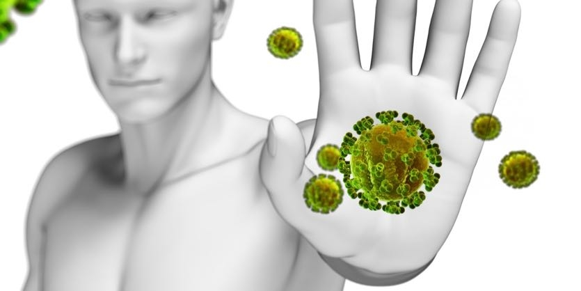 The Immune System: Your Body's Guards - Ask The Scientists