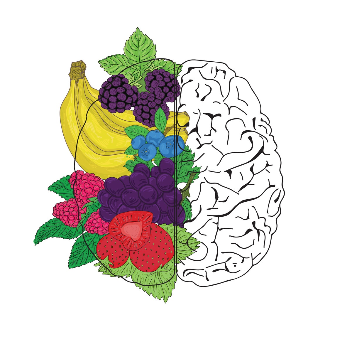 food for thought u2014nutrients for brain health