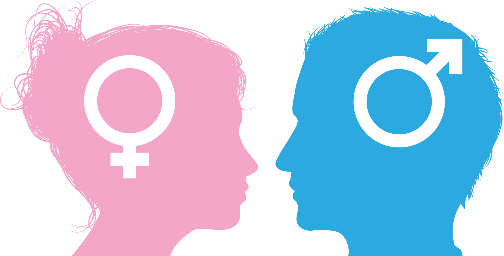 25 Fun Facts About What Makes Men and Women Different - Ask The Scientists