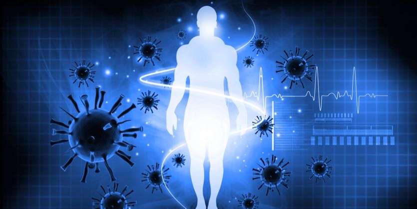 Immune System May Play Crucial Role In >> Secrets Of The Immune System The Unsung Heroes Of Immune Health